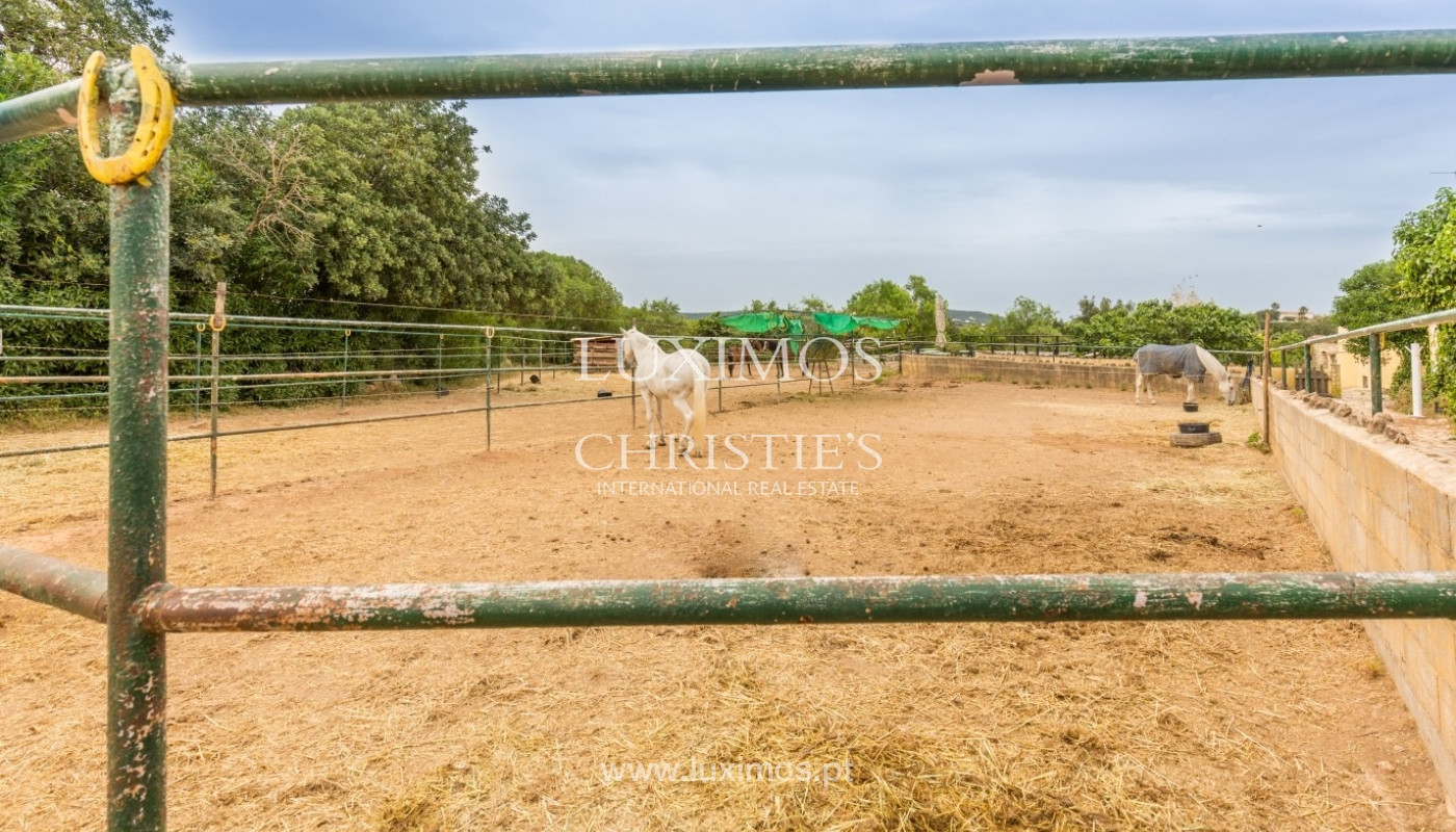 Farm with an equestrian school for sale, Loulé, Algarve, Portugal_57881