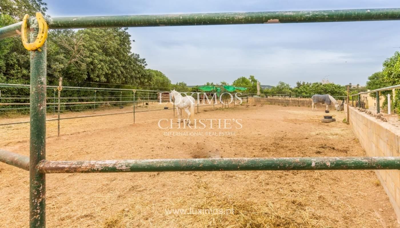 Quinta com escola equestre para venda, Loulé, Algarve_57881