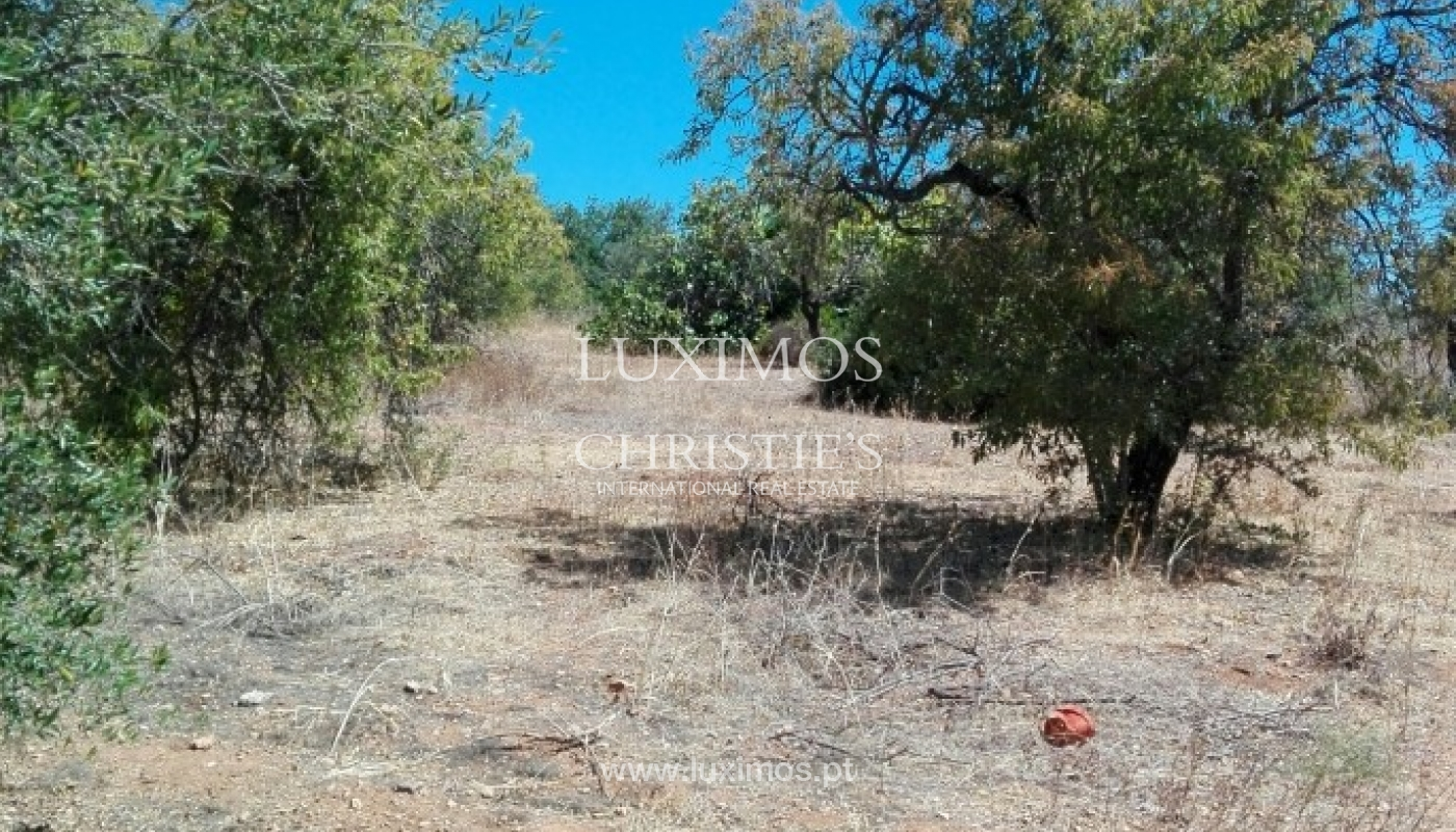 Plot area for urban construction for sale, Almancil, Algarve, Portugal_62546