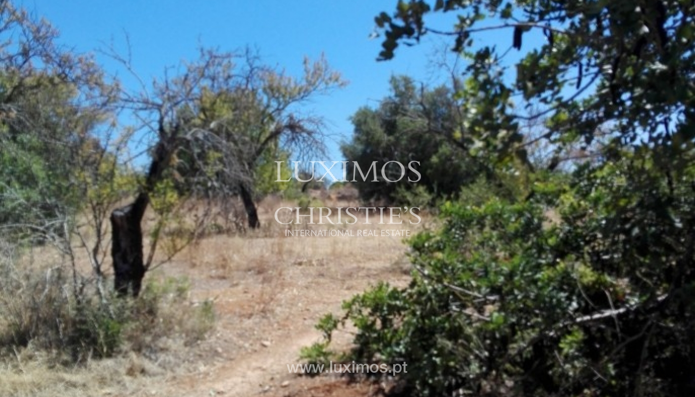 Plot area for urban construction for sale, Almancil, Algarve, Portugal_62547