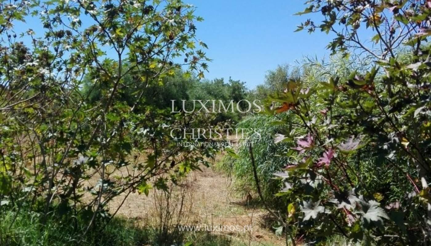 Plot area for sale, near the beach, Quarteira, Algarve, Portugal_62549