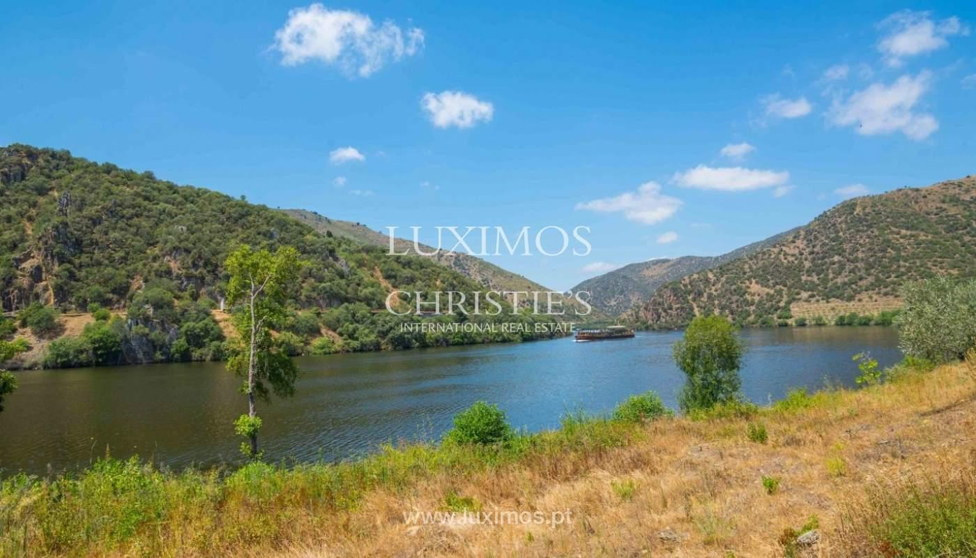 Farm for sale, with river front, Torre de Moncorvo, Douro, Portugal_62662