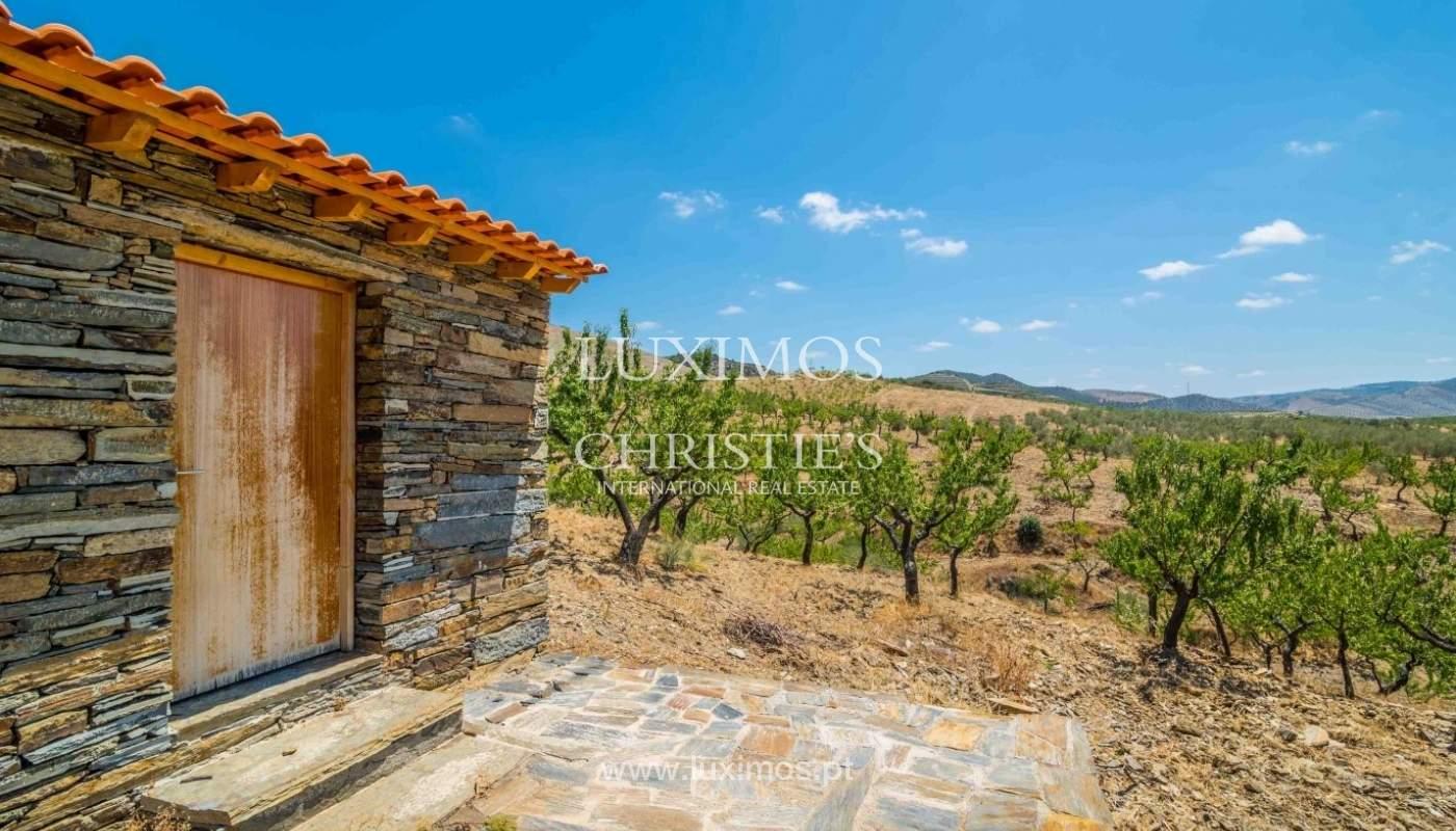 Farm for sale, with river front, Torre de Moncorvo, Douro, Portugal_62672