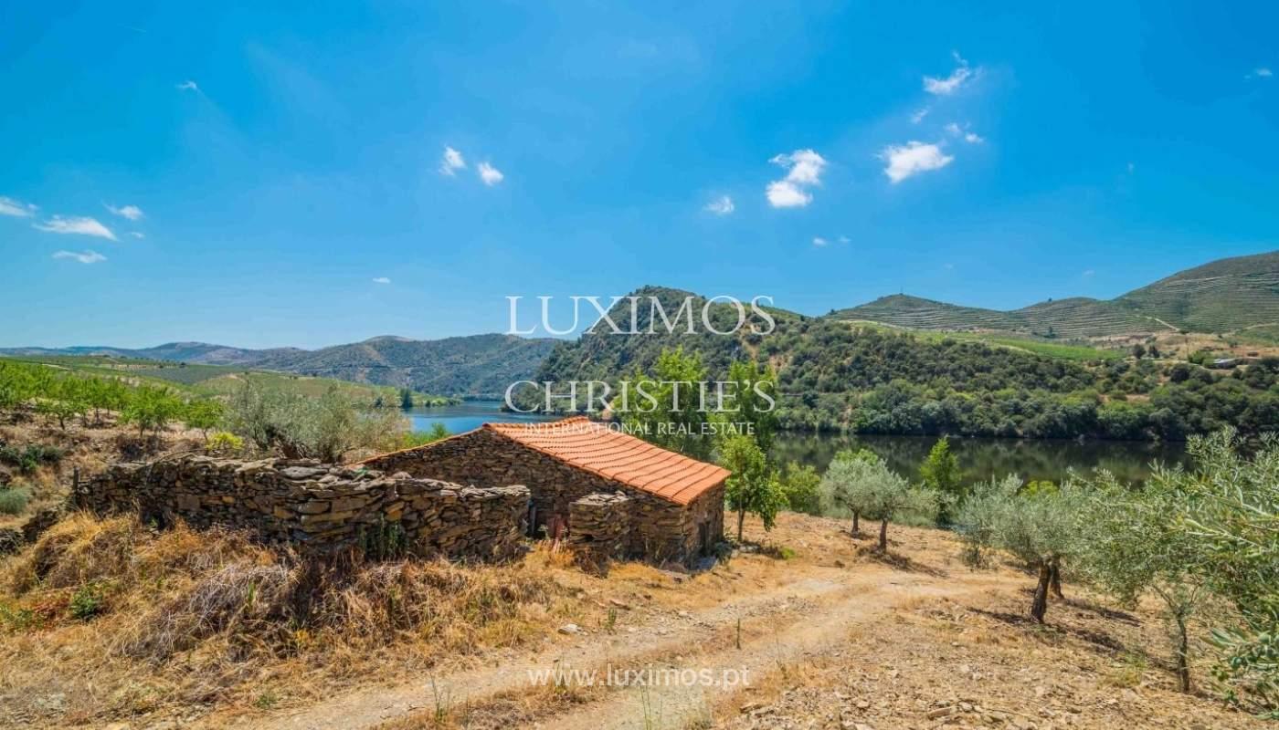 Farm for sale, with river front, Torre de Moncorvo, Douro, Portugal_62682