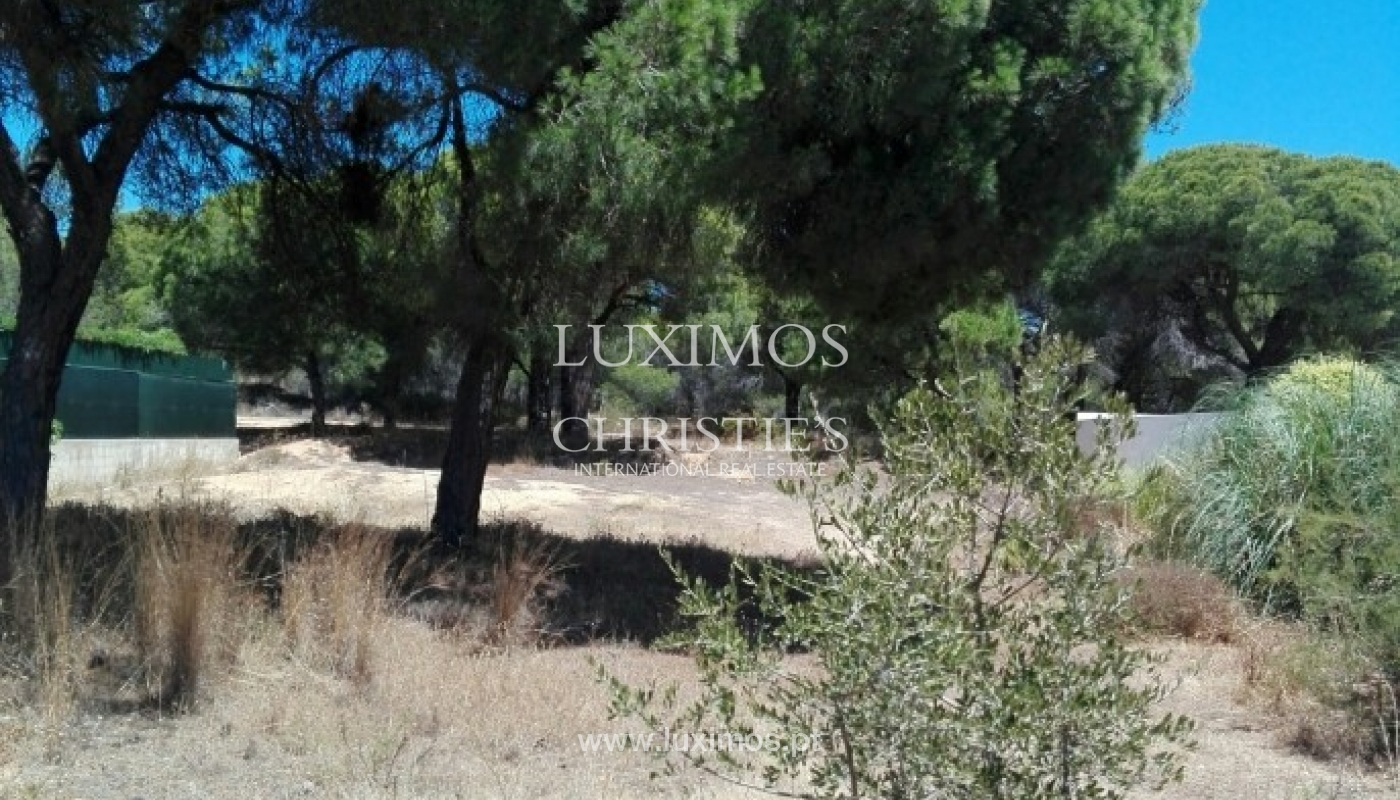 Terreno para venda perto da praia e do golfe, Ancão, Almancil, Algarve_64123