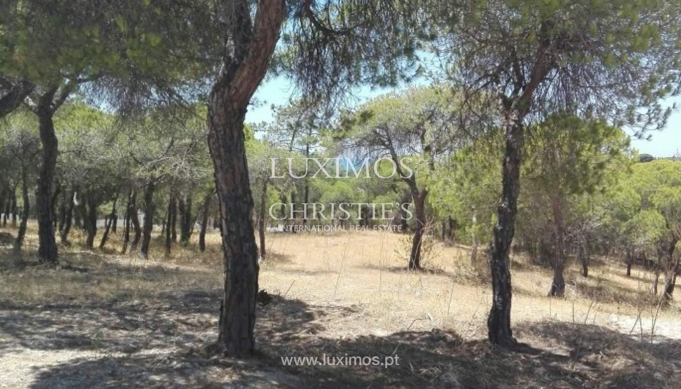 Land für Verkauf in der Nähe von Strand und golf, Ancão, Almancil, Algarve, Portugal_64142