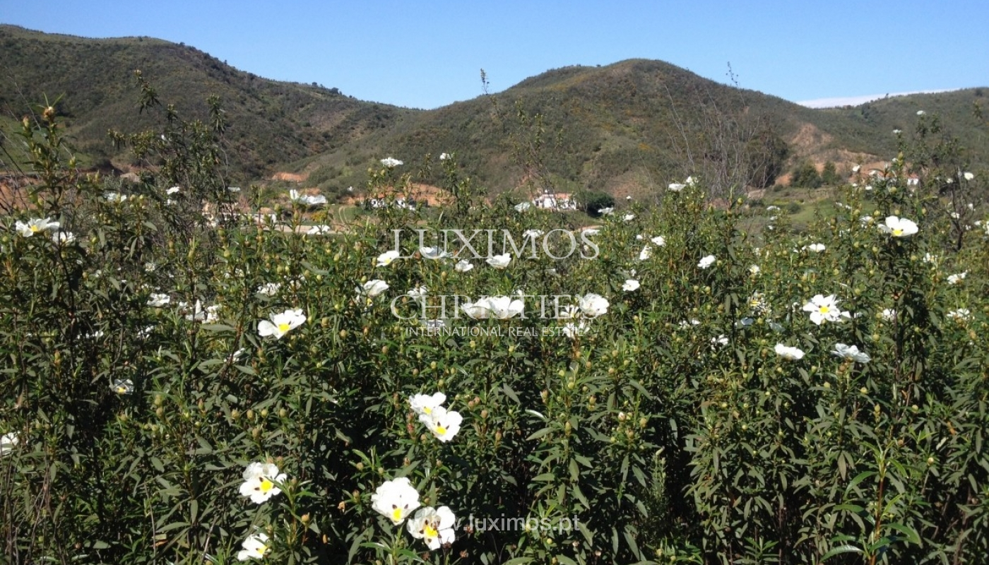 Plot of land for sale, Silves, Algarve, Portugal_65426