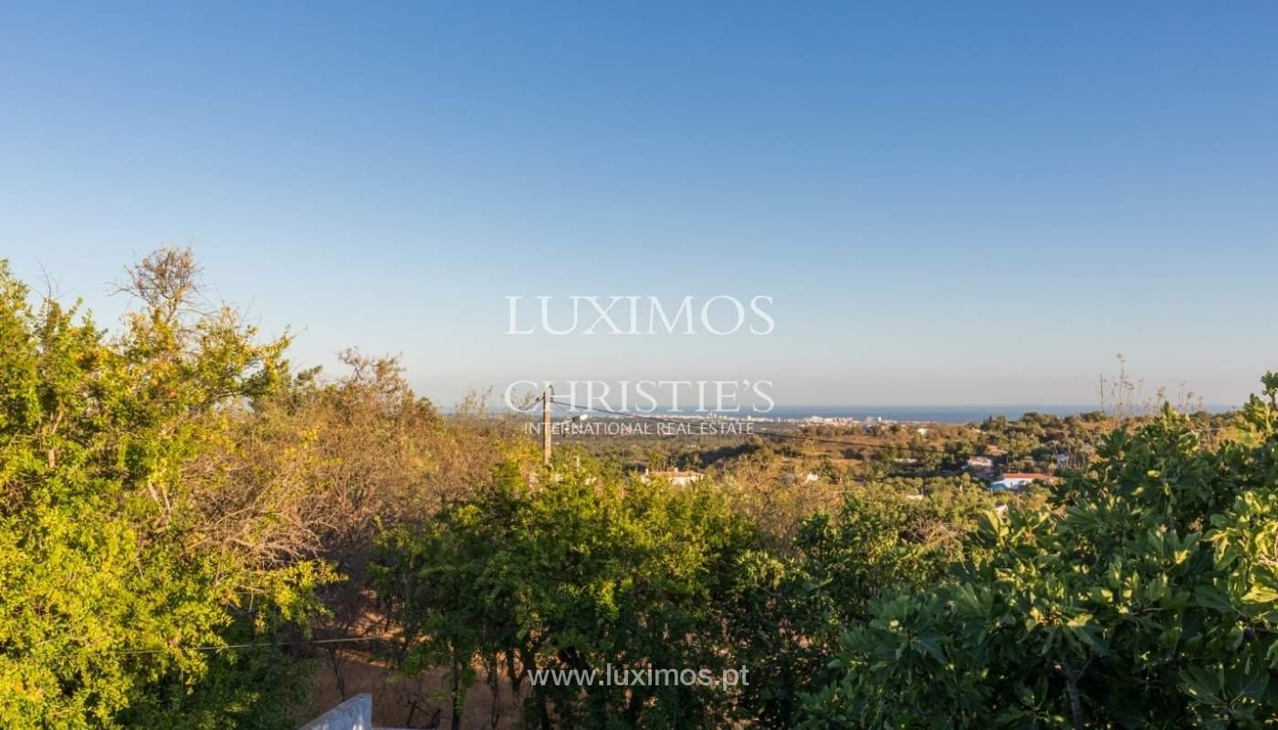 Villa/House-Boliqueime_66338
