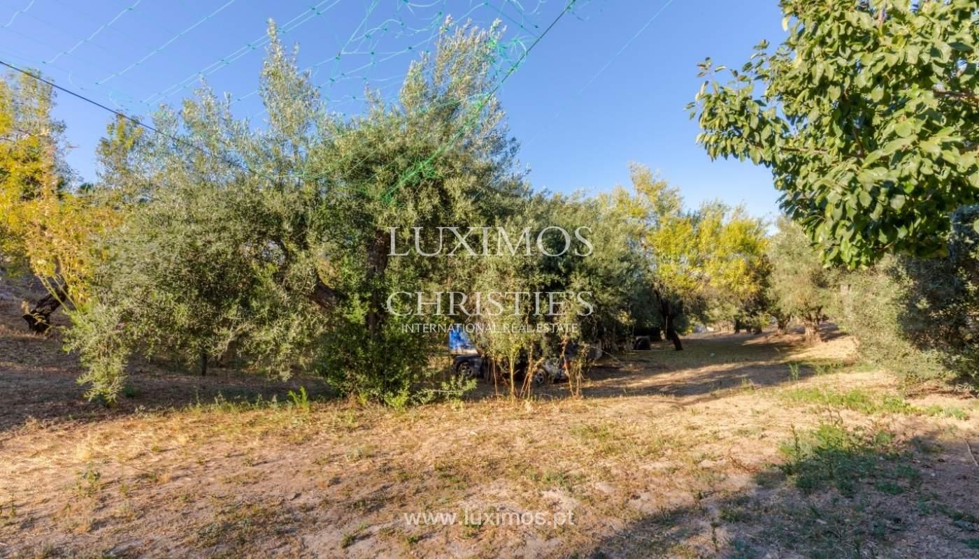 Lote de terreno para venda, vista mar e serra, Loulé, Algarve_67090