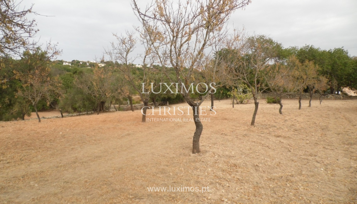 Plot area for sale, sea and mountain views, Loulé, Algarve, Portugal_68348