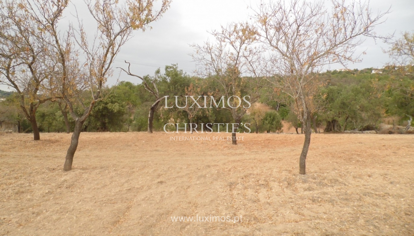 Plot area for sale, sea and mountain views, Loulé, Algarve, Portugal_68351