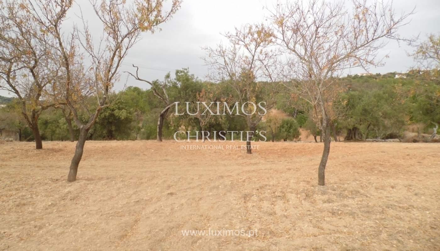 Terreno para venda, vistas mar, costa e serra, Loulé, Algarve_68351