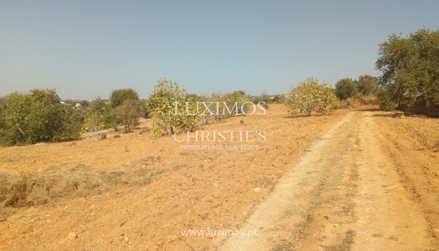 Grundstücke zum Verkauf mit Ruine, Boliqueime, Algarve, Portugal_69586