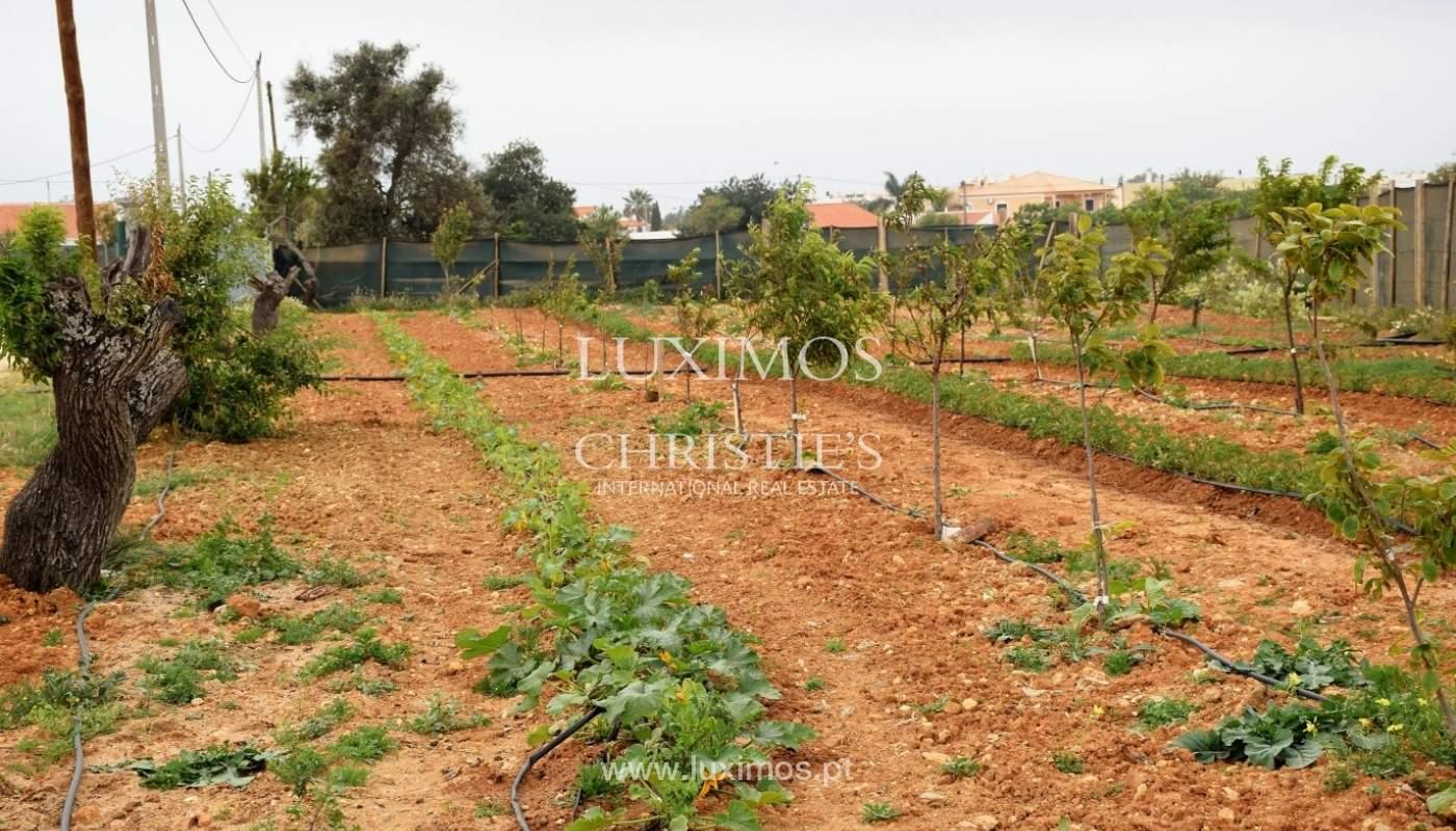Bauernhof zum Verkauf in der Nähe vom Strand, Albufeira, Algarve, Portugal_69933