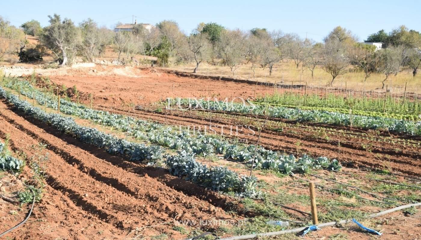 Bauernhof zum Verkauf in der Nähe vom Strand, Albufeira, Algarve, Portugal_69953