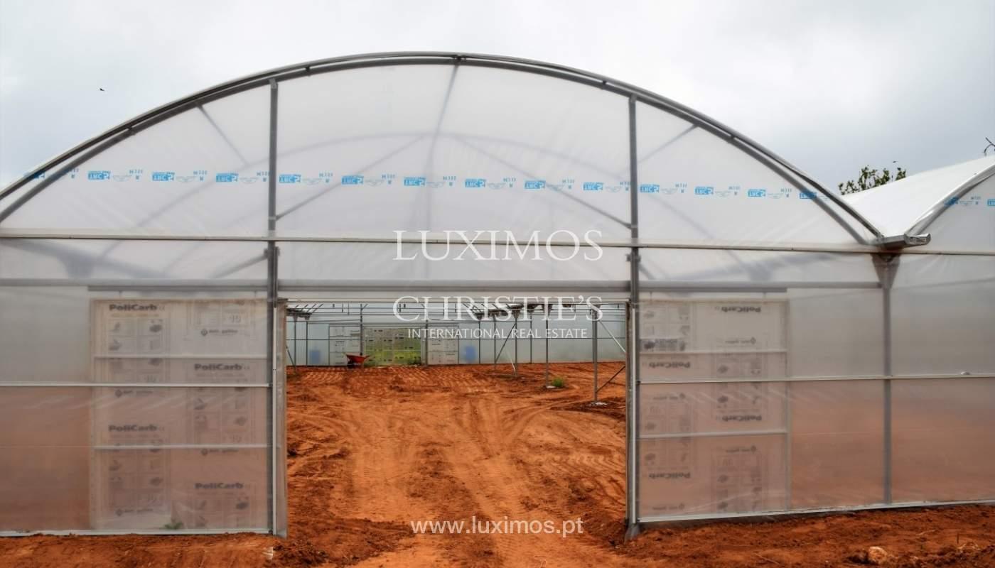Bauernhof zum Verkauf in der Nähe vom Strand, Albufeira, Algarve, Portugal_69960