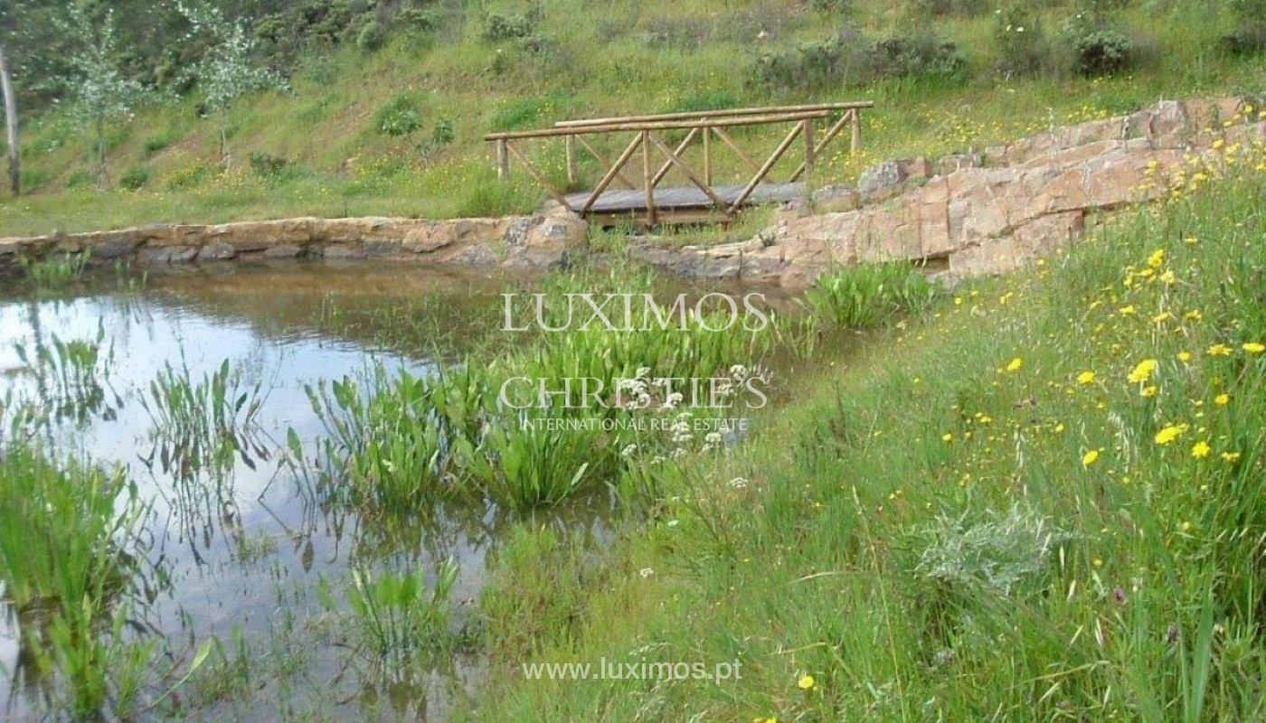 Property for sale, near the beach, Lagos, Algarve, Portugal_72657