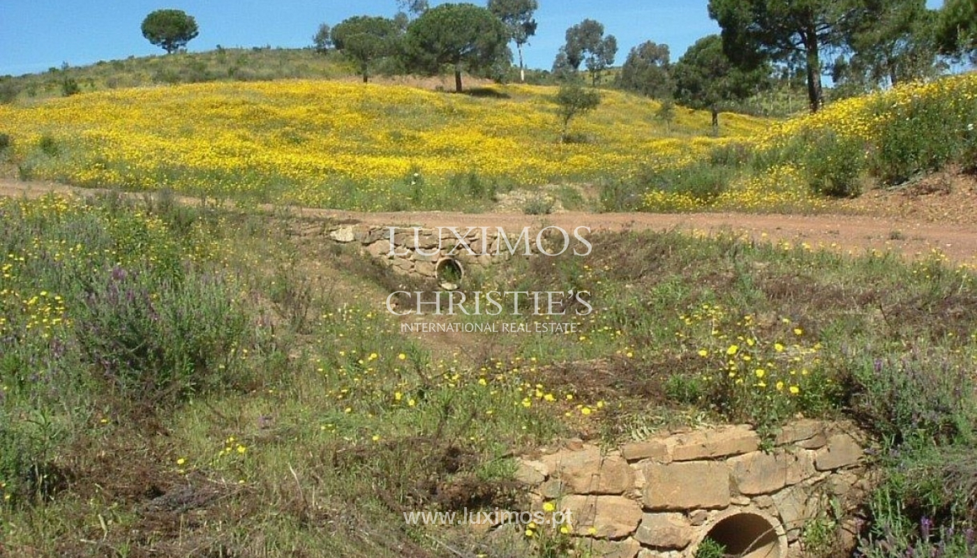 Property for sale, near the beach, Lagos, Algarve, Portugal_72661