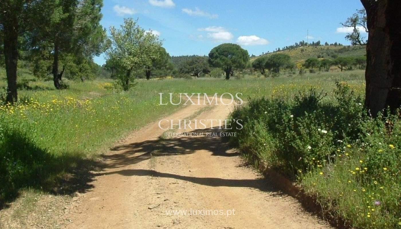Propriedade para venda, perto das praias, Lagos, Algarve_72662