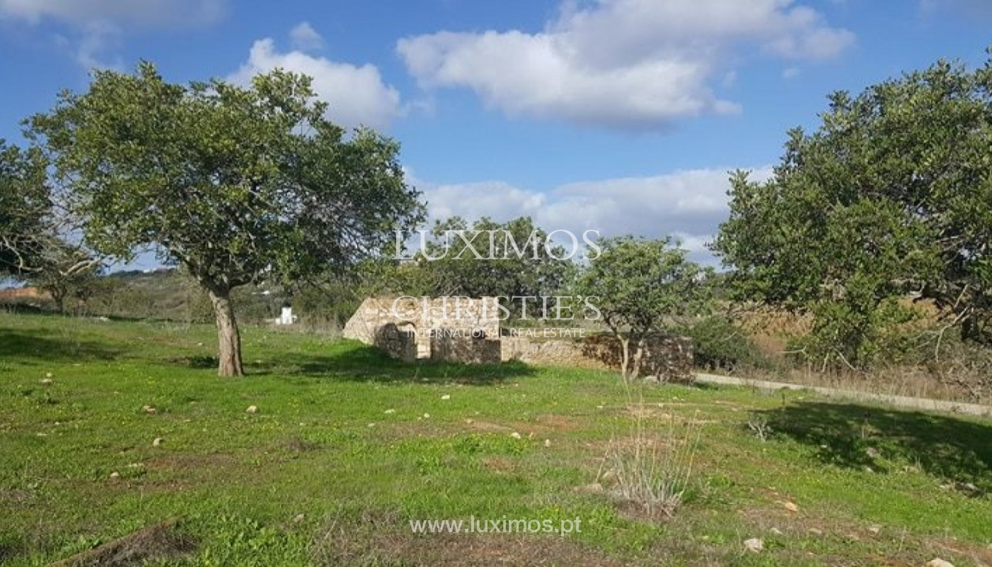 Farm for sale, near the beaches and golf, Lagos, Algarve, Portugal_72774