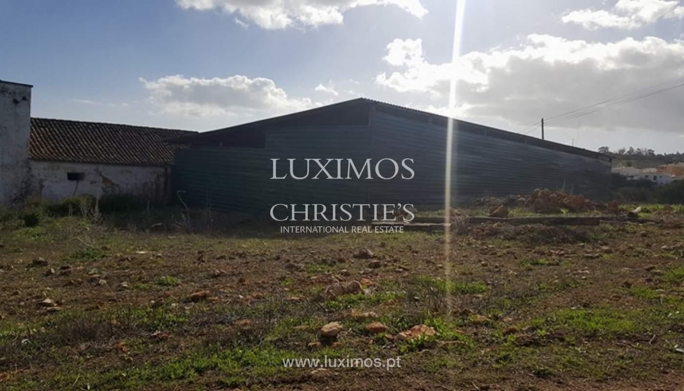 Farm for sale, near the beaches and golf, Lagos, Algarve, Portugal_72783