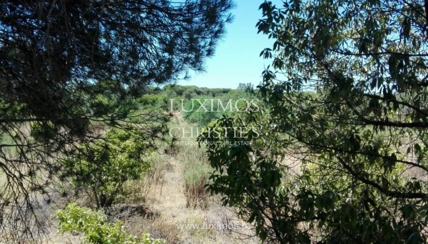 Plot area for sale, near the beach, Quarteira, Algarve, Portugal_77827