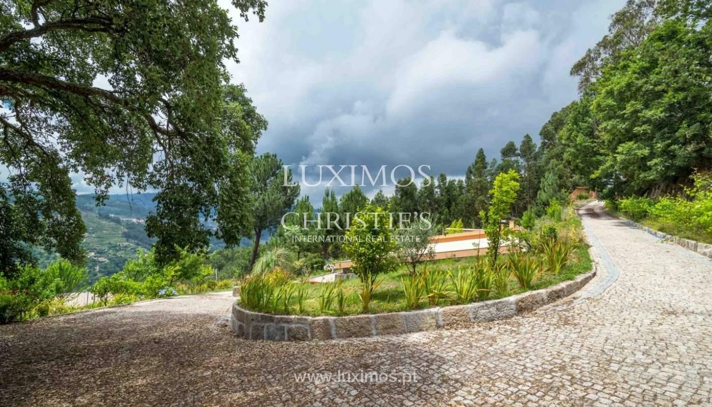 Villa avec vue sur la Rivière Douro, Cinfães, Viseu, Portugal _82925
