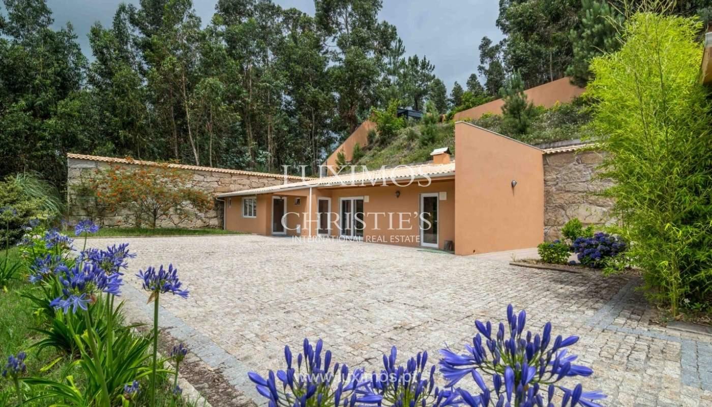 Villa avec vue sur la Rivière Douro, Cinfães, Viseu, Portugal _82927
