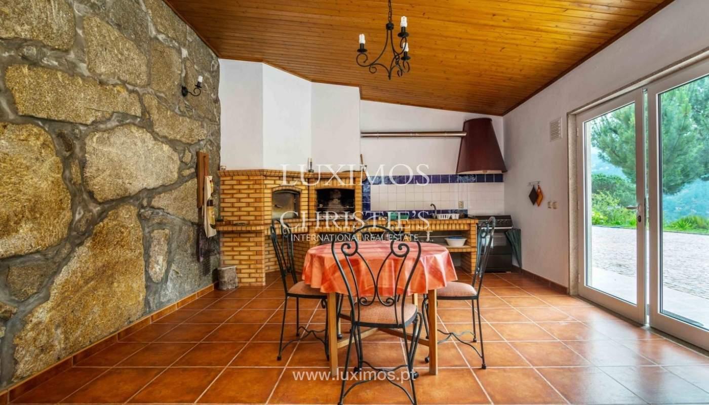 Villa avec vue sur la Rivière Douro, Cinfães, Viseu, Portugal _82936