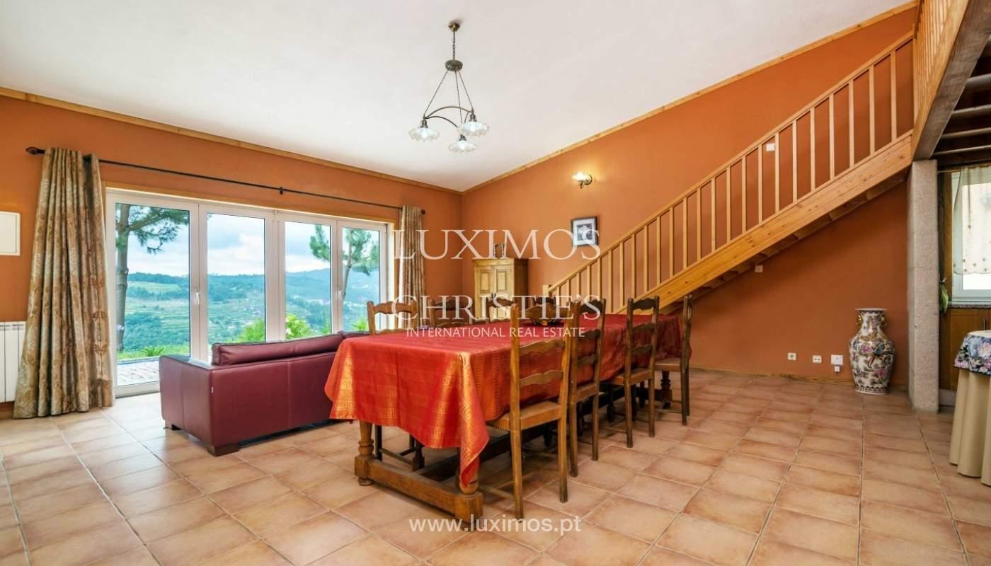 Villa avec vue sur la Rivière Douro, Cinfães, Viseu, Portugal _82942