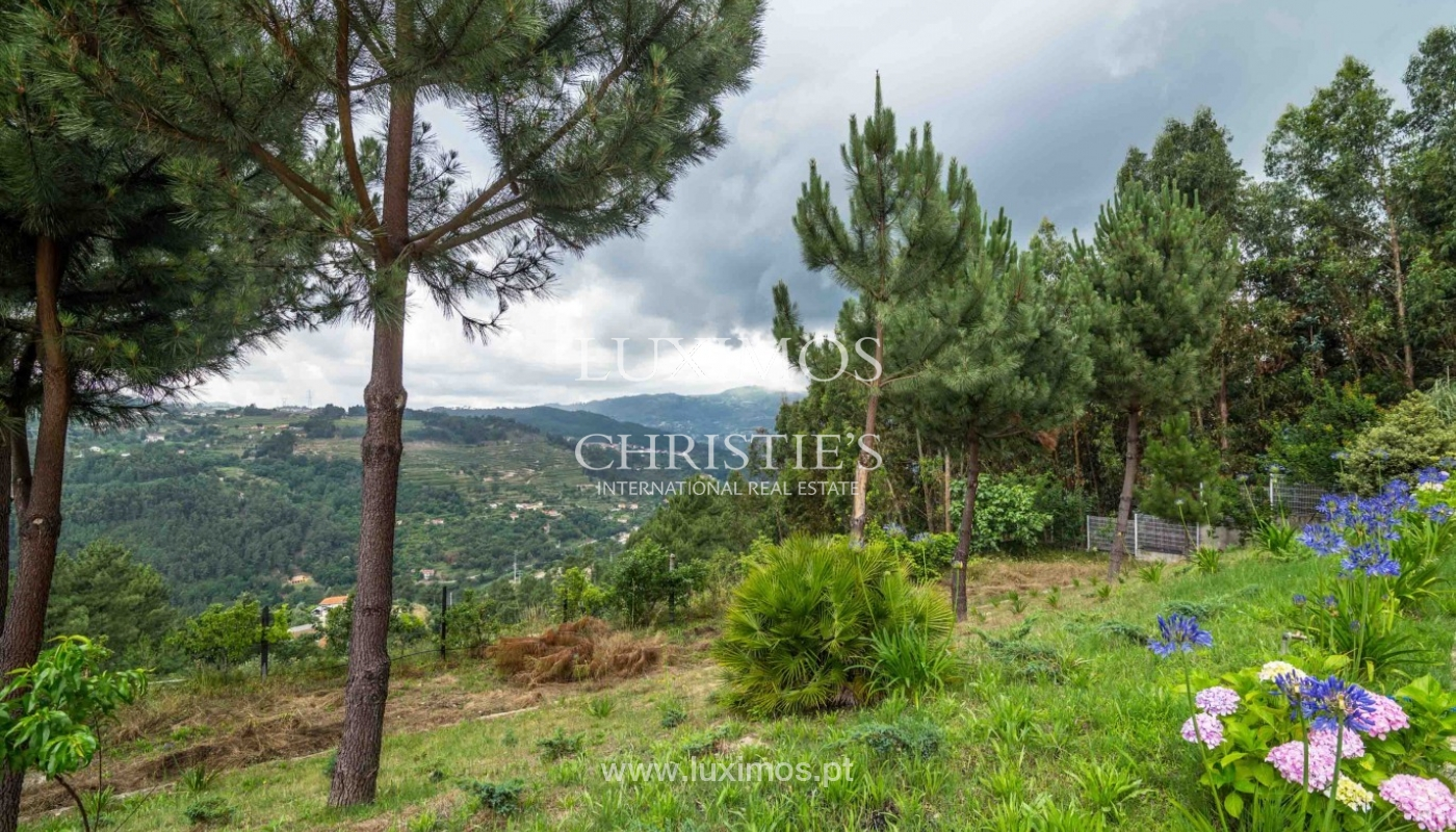 Villa avec vue sur la Rivière Douro, Cinfães, Viseu, Portugal _82949