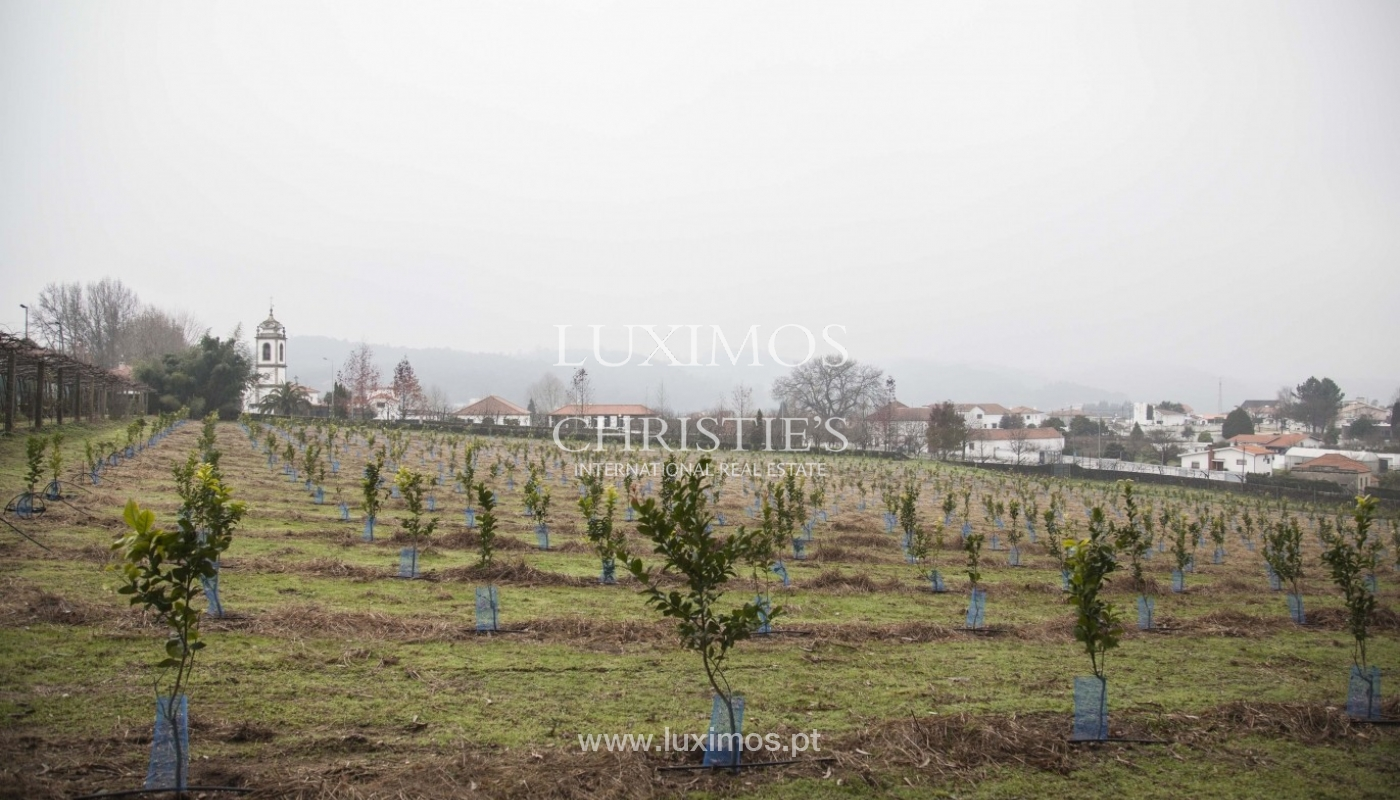 Country House with swimming pool, tennis court and plot area in Porto, Portugal_8365