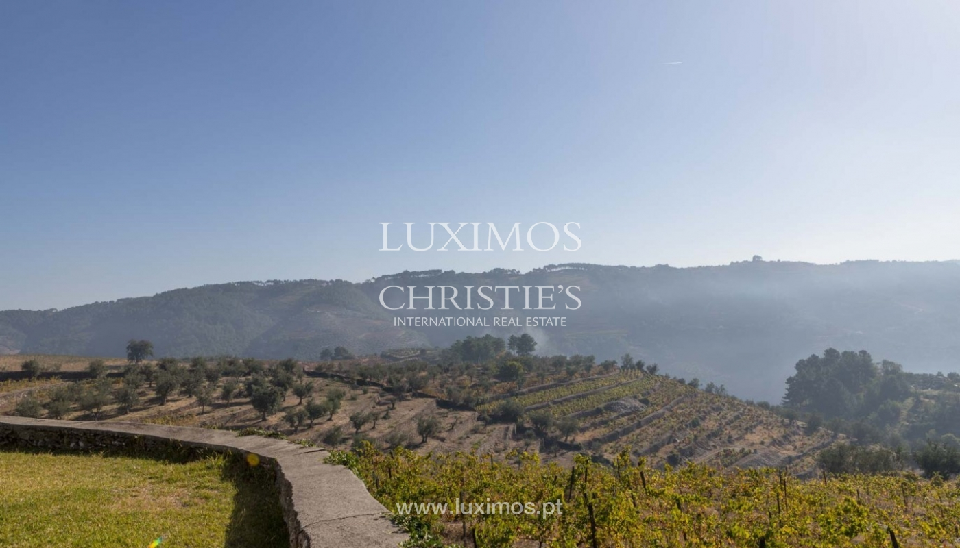 Sale of vineyard in the beautiful Douro Region, Portugal_93131