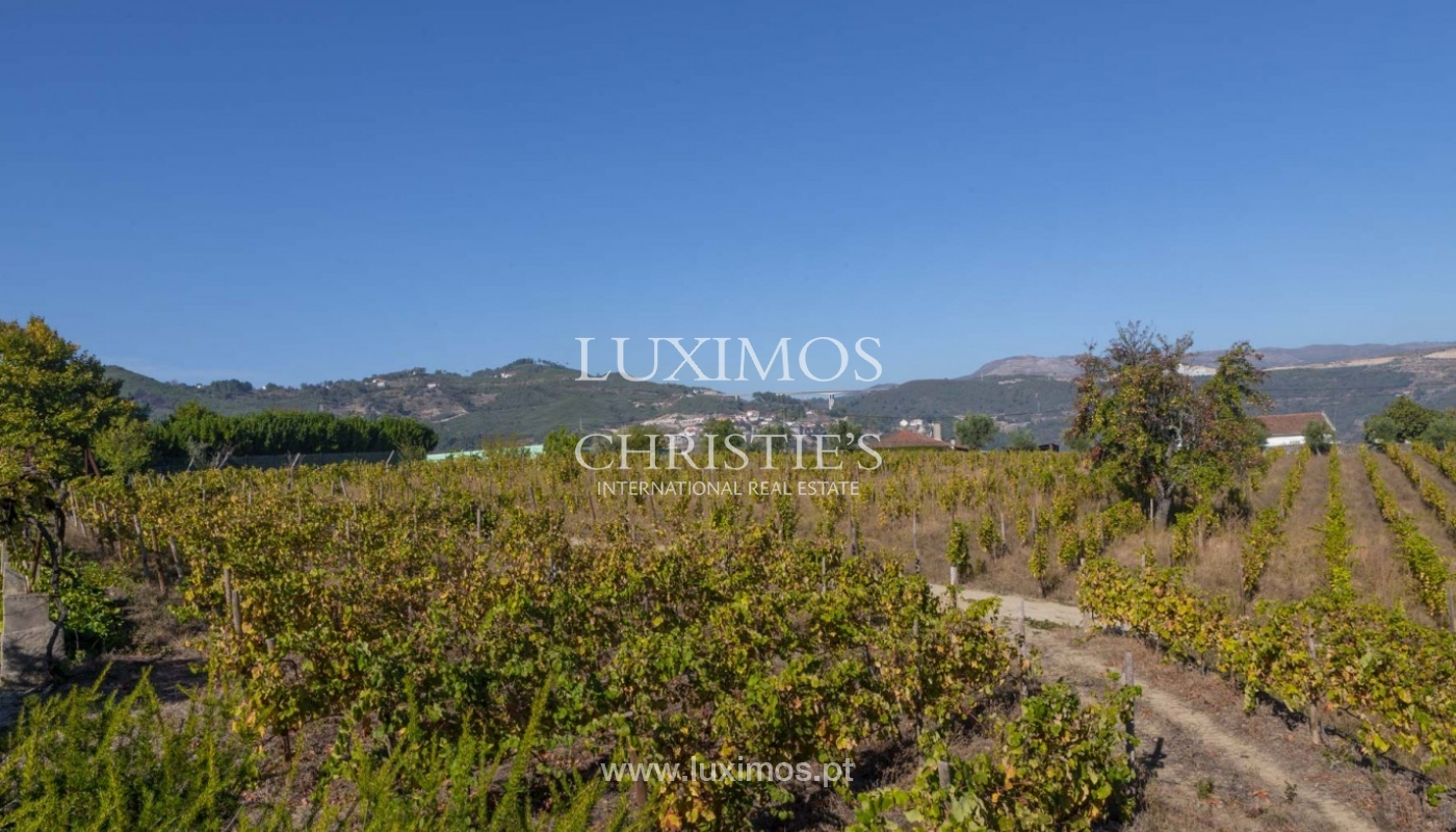 Sale of vineyard in the beautiful Douro Region, Portugal_93132