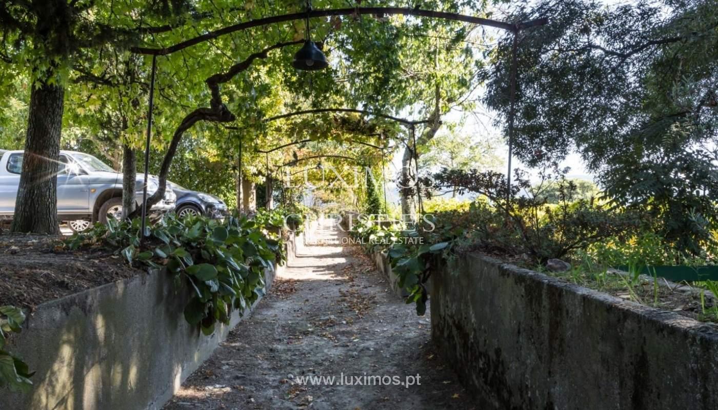 Finca Vinícola, en Región del Duero, Sta Marta de Penaguião, Portugal_93154