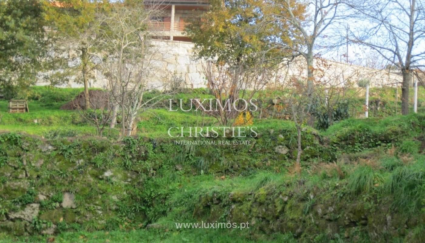 Maison de campagne avec verger et une vue fantastique sur la rivière à Baião, Portugal_9345
