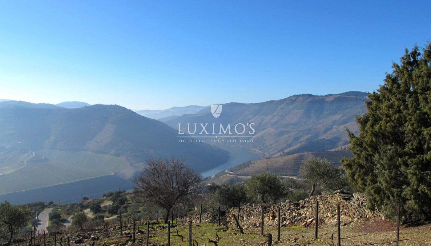 Sale of Vineyard w/ project for building a Hotel, in Douro, Portugal_93462