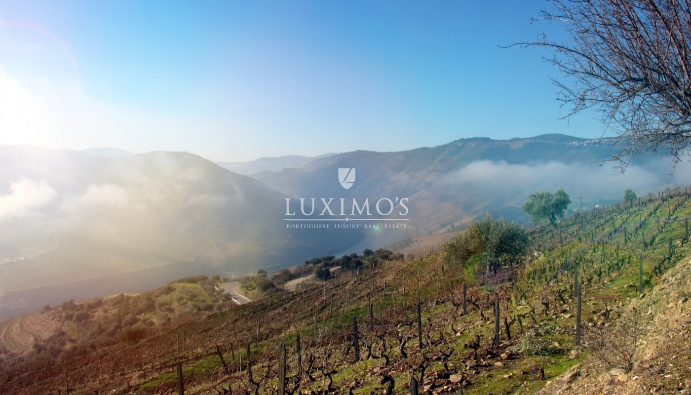 Sale of Vineyard w/ project for building a Hotel, in Douro, Portugal_93463