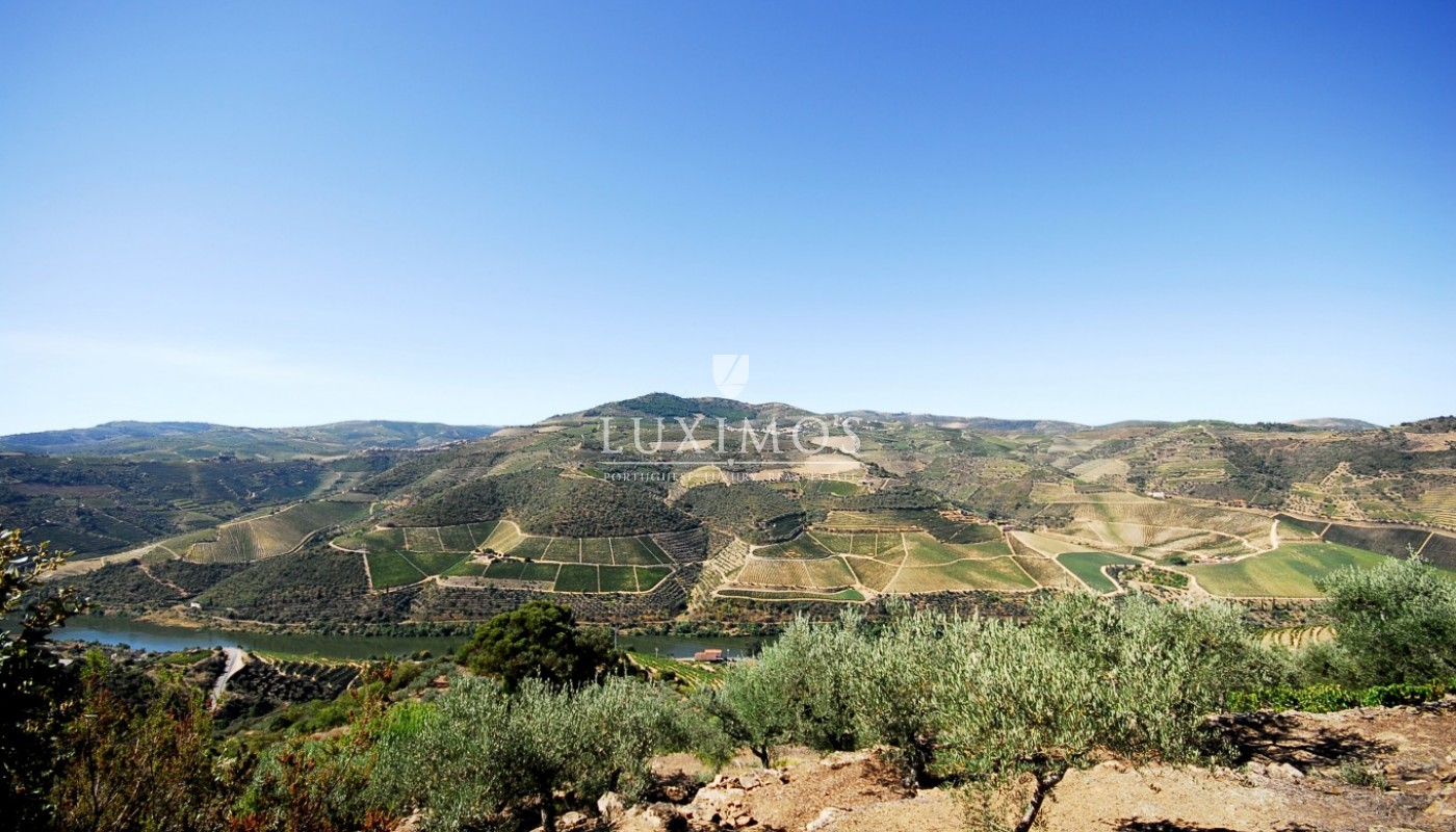 Sale of Vineyard w/ project for building a Hotel, in Douro, Portugal_93464
