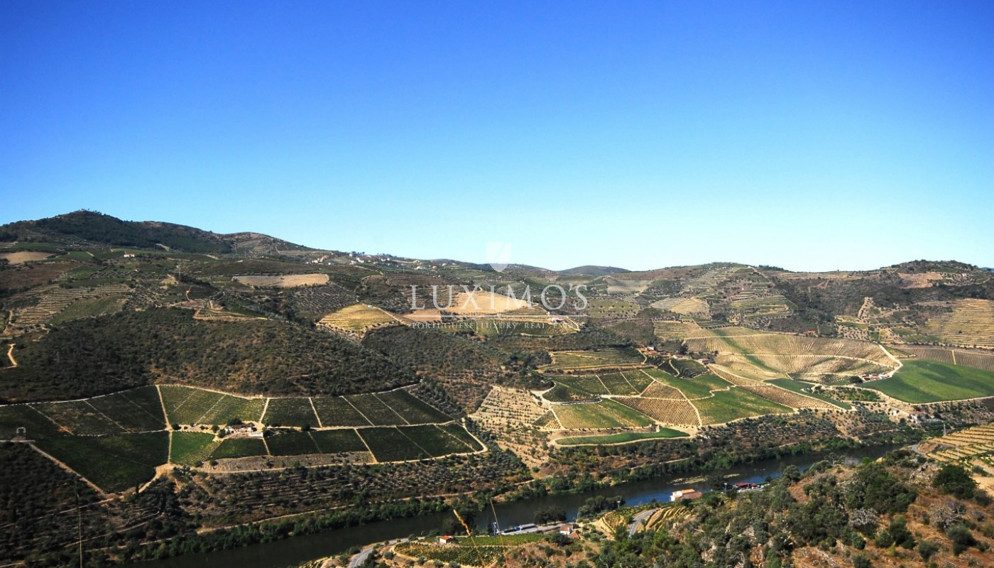 Sale of Vineyard w/ project for building a Hotel, in Douro, Portugal_93465