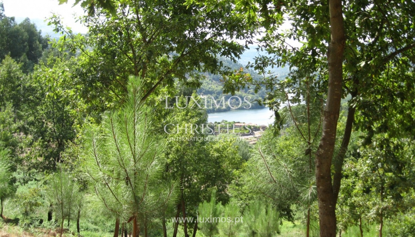 Country house with orchard and fantastic river views in Baião, Portugal_9347