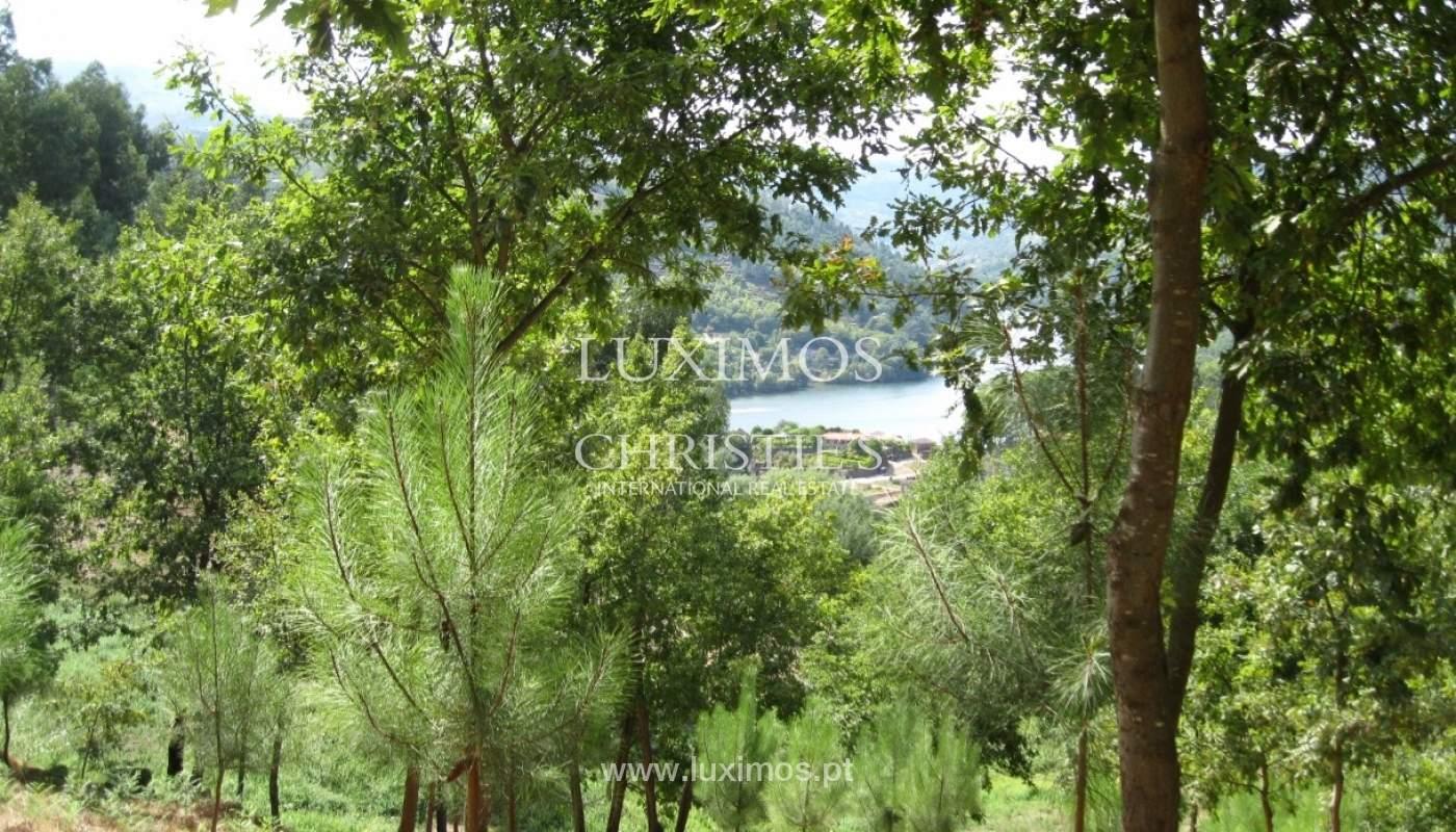 Maison de campagne avec verger et une vue fantastique sur la rivière à Baião, Portugal_9347
