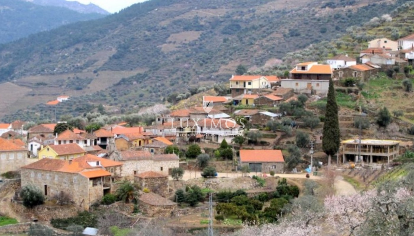 Sale of Vineyard w/ project for building a Hotel, in Douro, Portugal_93506