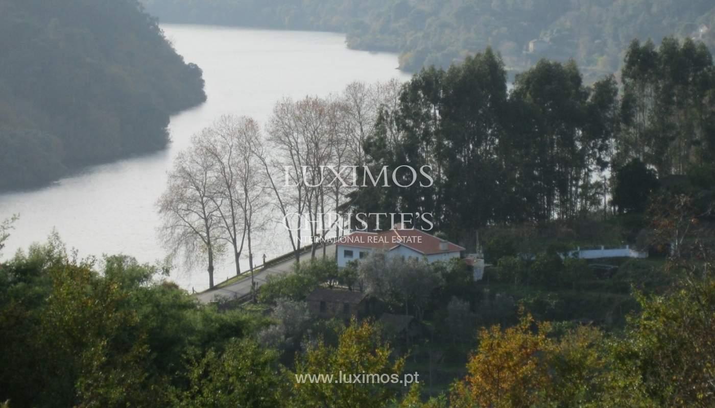 Maison de campagne avec verger et une vue fantastique sur la rivière à Baião, Portugal_9352