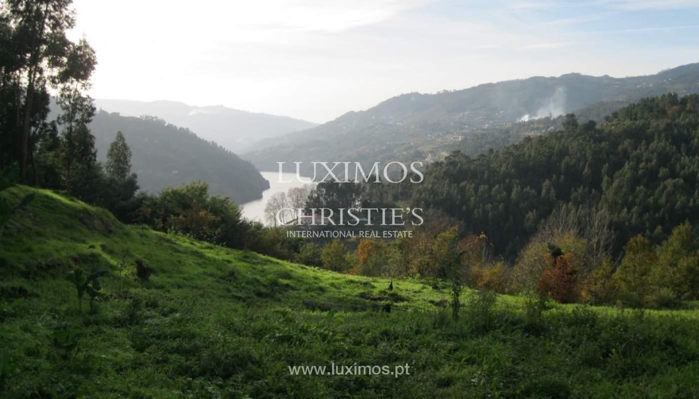 Maison de campagne avec verger et une vue fantastique sur la rivière à Baião, Portugal_9353