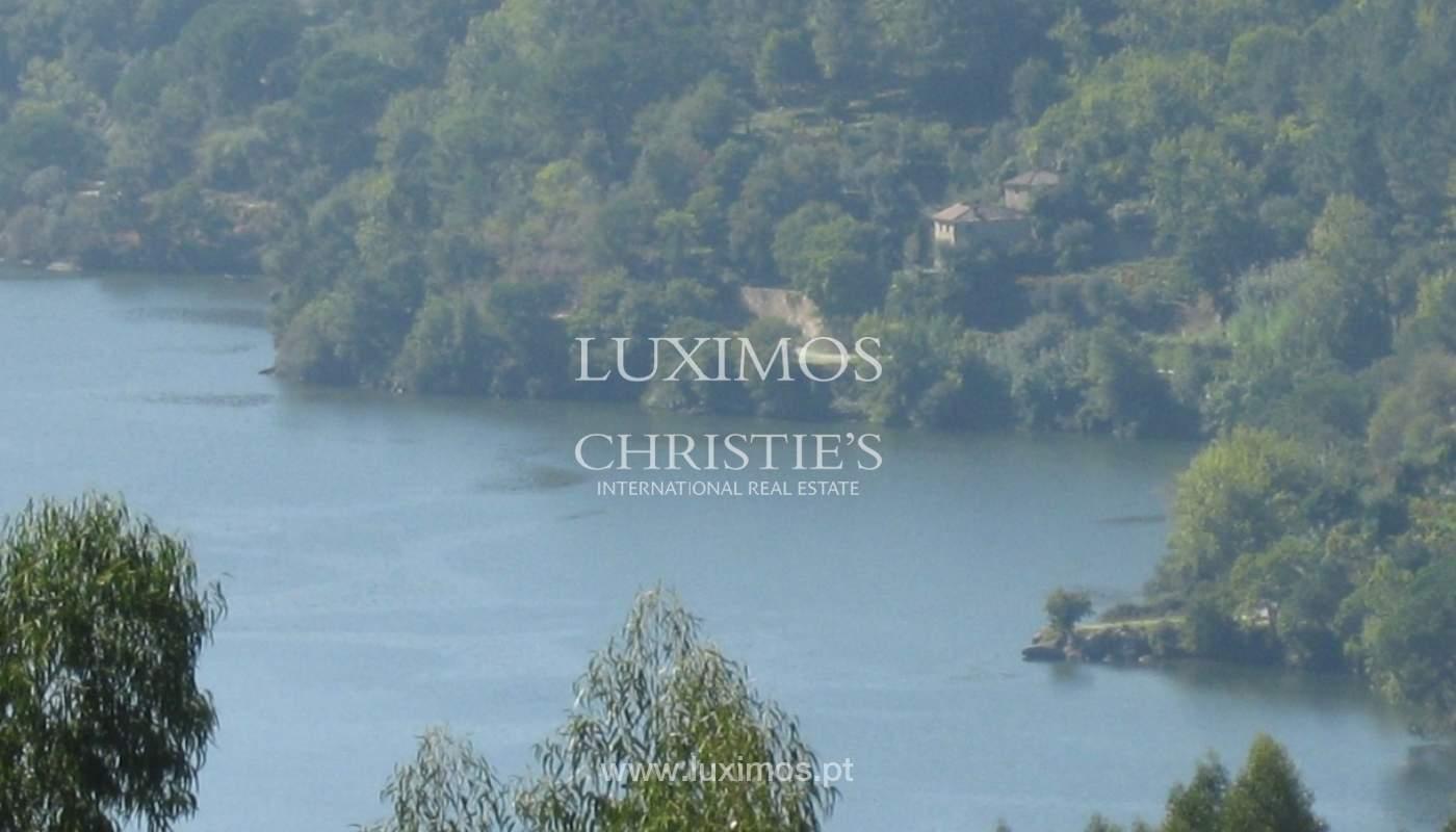 Maison de campagne avec verger et une vue fantastique sur la rivière à Baião, Portugal_9355