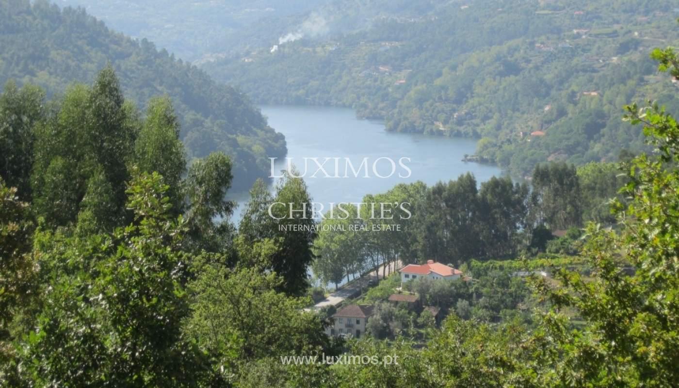 Maison de campagne avec verger et une vue fantastique sur la rivière à Baião, Portugal_9356
