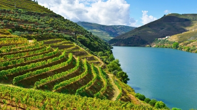 A Wine Tour of the Iberian Peninsula
